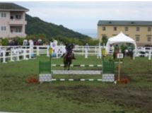 馬術競技 成年男子 草薙裕選手  (トップスコア 第2位)