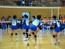 バレーボール競技 少年女子 茨城選抜