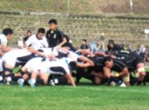 ラグビーフットボール競技 成年男子 茨城選抜 (第5位)