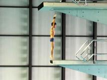 水泳競技(飛込) 少年男子