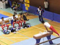 体操競技(競技) 成年男子