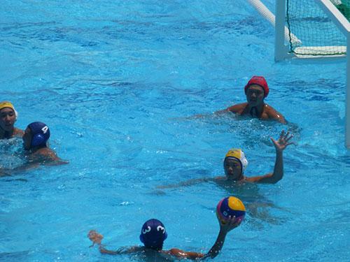 第71回国体関東ブロック大会 水泳競技(水球