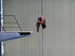 水泳競技(飛込)成年男子