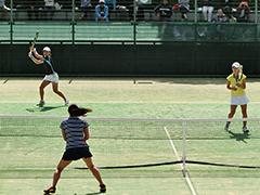 テニス競技成年女子
