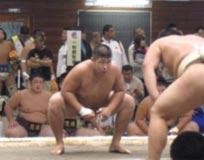 相撲競技 少年男子 茨城選抜