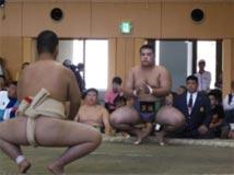 相撲競技 成年男子 茨城選抜