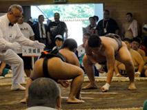 相撲競技 少年男子